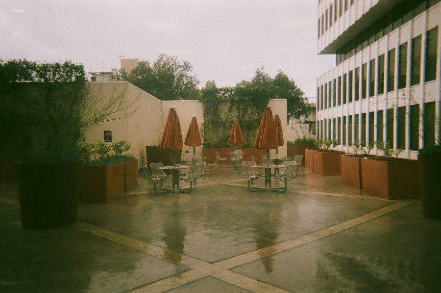 rain and the wrong coffee shop