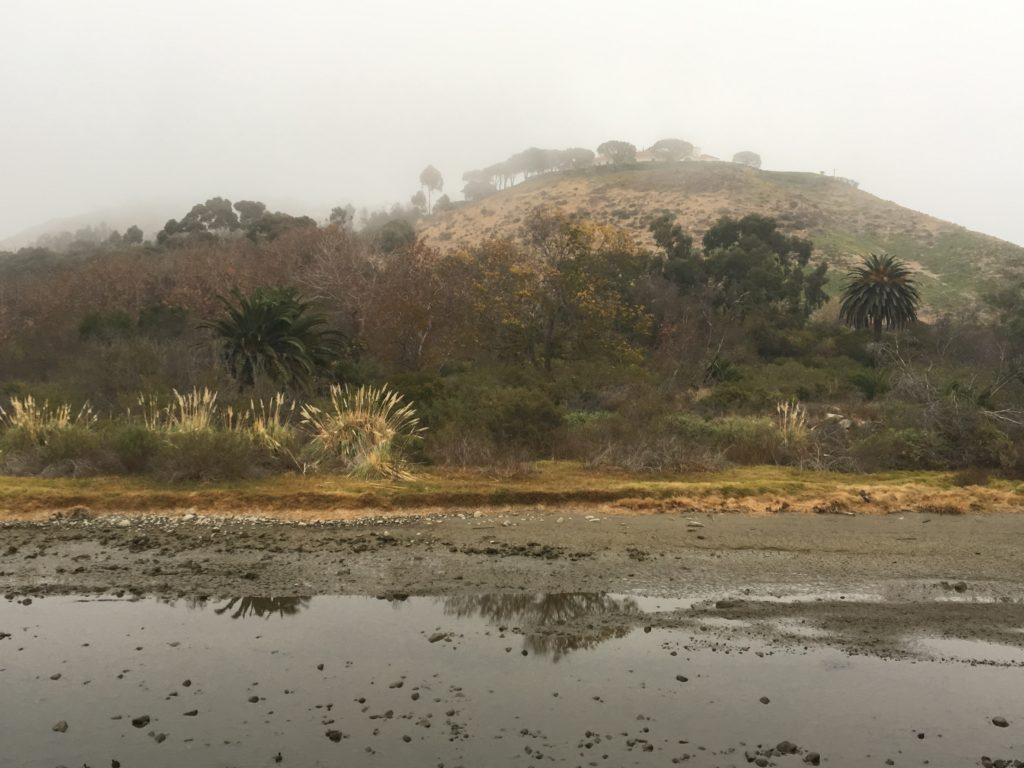 venutian landscape