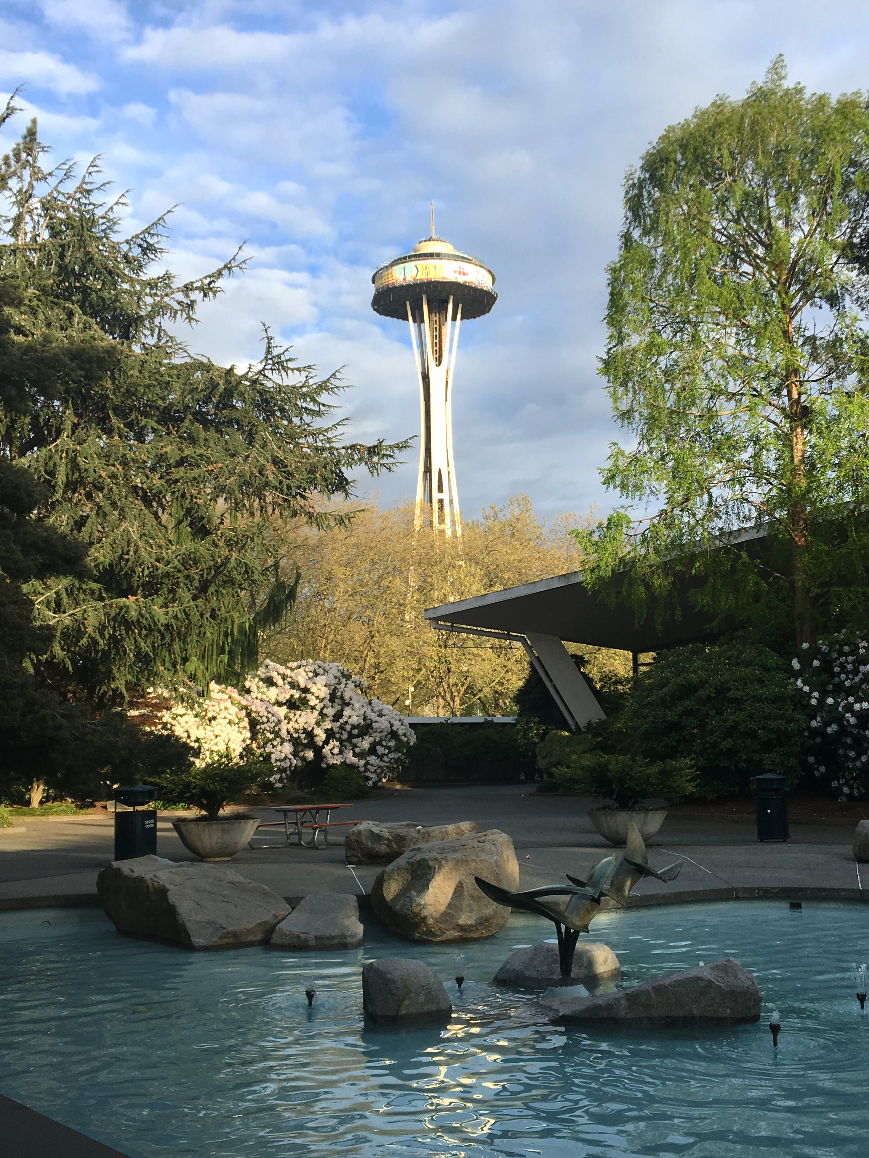 seattle space needle from park pond