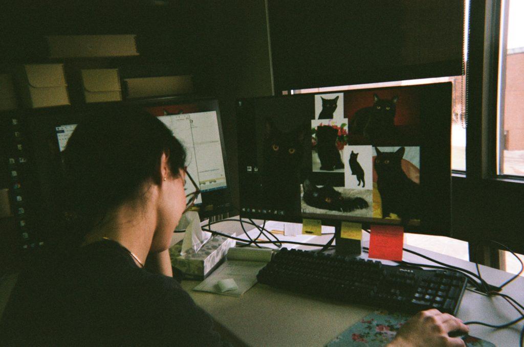 lauren's conservation desk with black cats